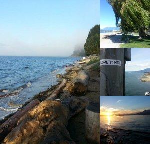 Vancouver beaut 1
